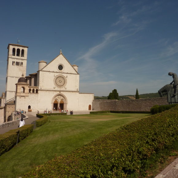 6. Assise